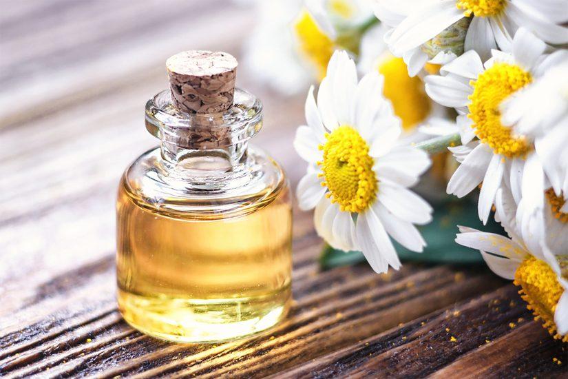 Un jour une huile essentielle : la Camomille Romaine